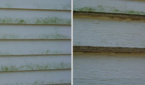 LP-Siding-Issues-A-Cut-Above-Exteriors