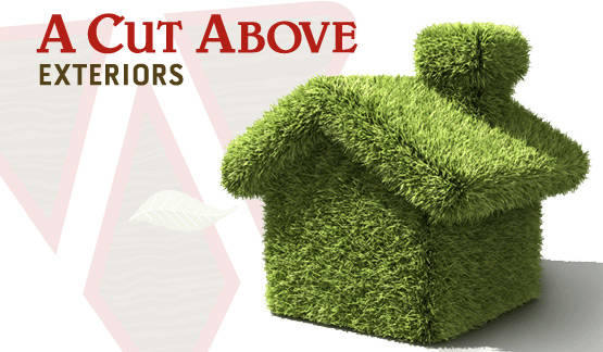A-Cut-Above-Exteriors-Green-Energy-Best-Practices